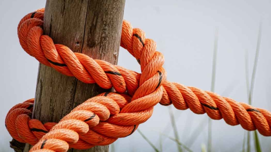 Knotted Rope Resized